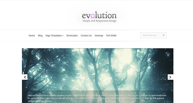 Evolution Theme