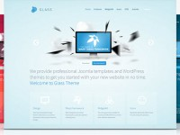Best WordPress Business Themes June 2013
