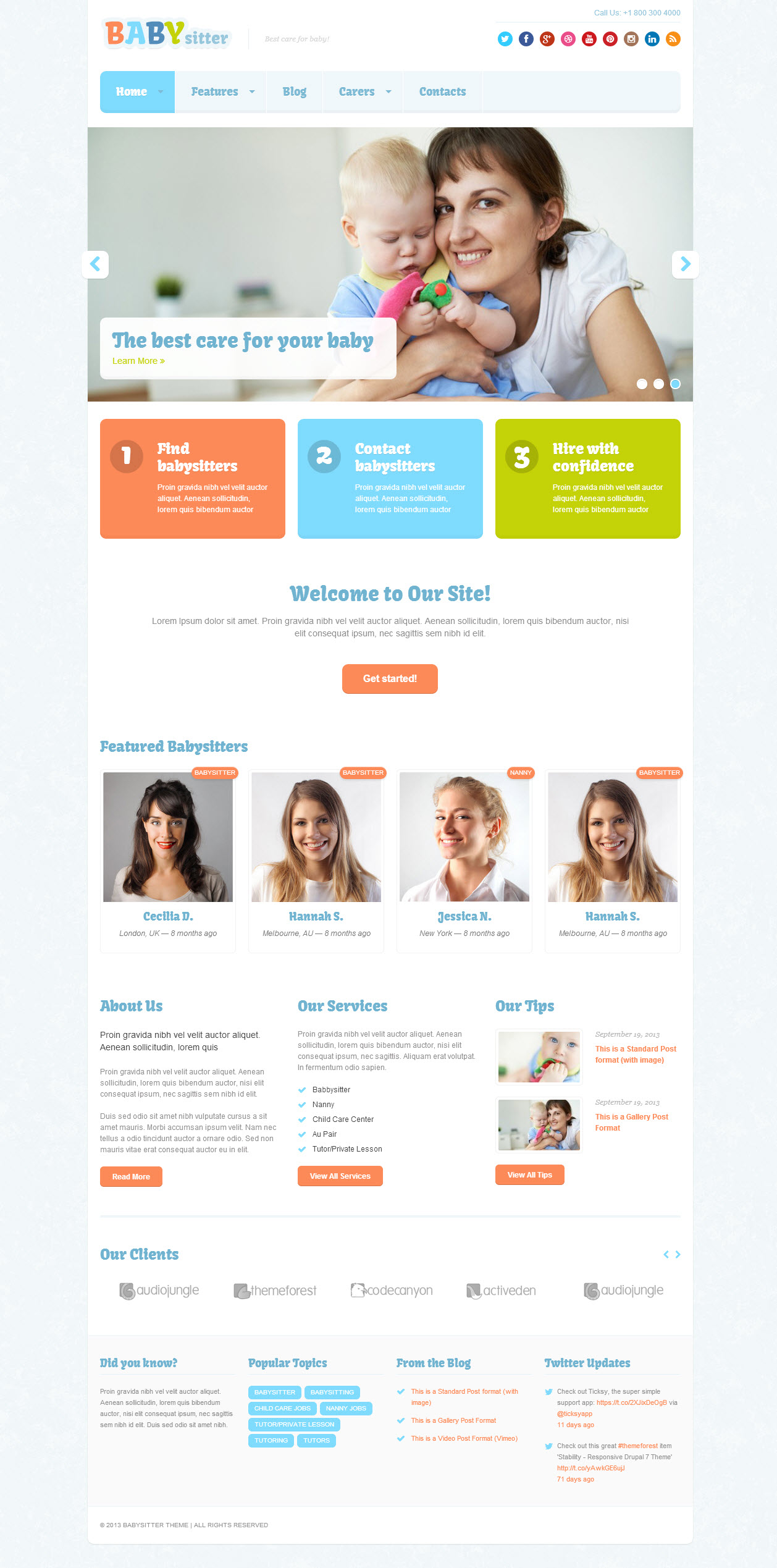 wordpress blog themes n premium themes plugins babysitter theme
